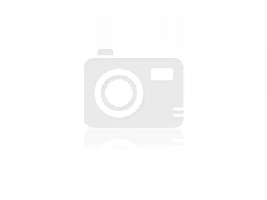 Suzuki baleno (1995-2002) цена, технические характеристики, фото и видео