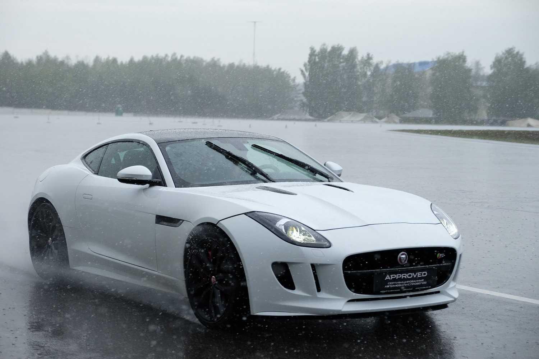 Jaguar x-type – оригинальный кот