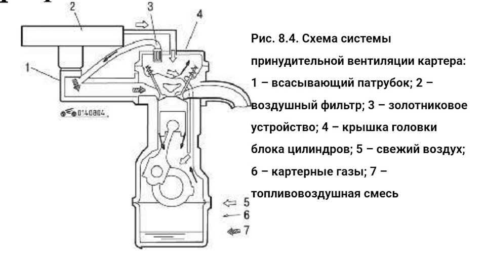 Что такое система вентиляции картера двигателя где находится назначение конструкция и схема клапан EGR мембрана и маслоотделитель принцип работы неисправности как почистить